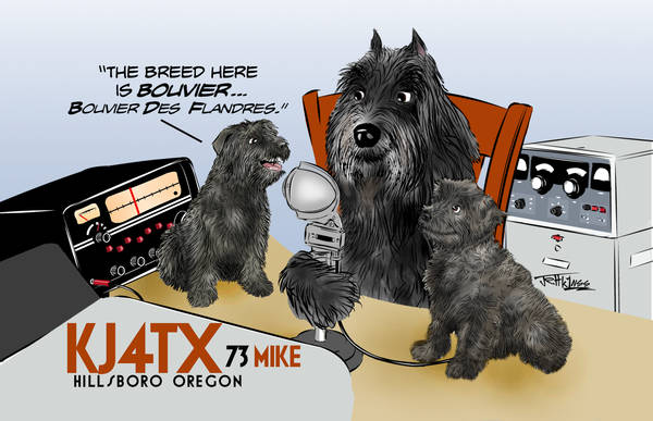 Bouvier Drawing for QSL Card